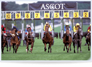Horse Racing Royal Ascot